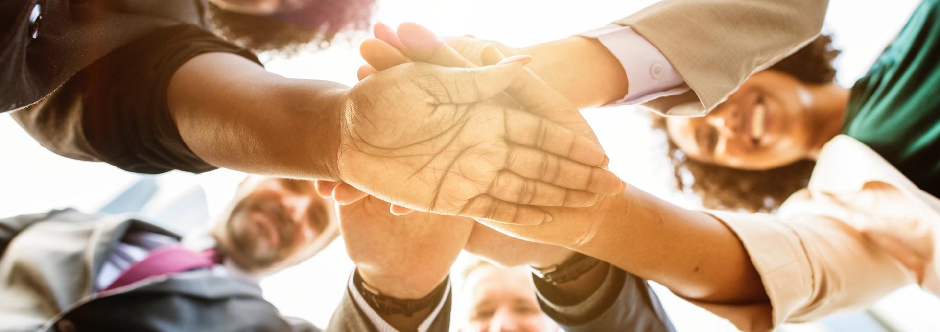 Steinbach Strategien bietet Nachhaltigkeitsmanagement